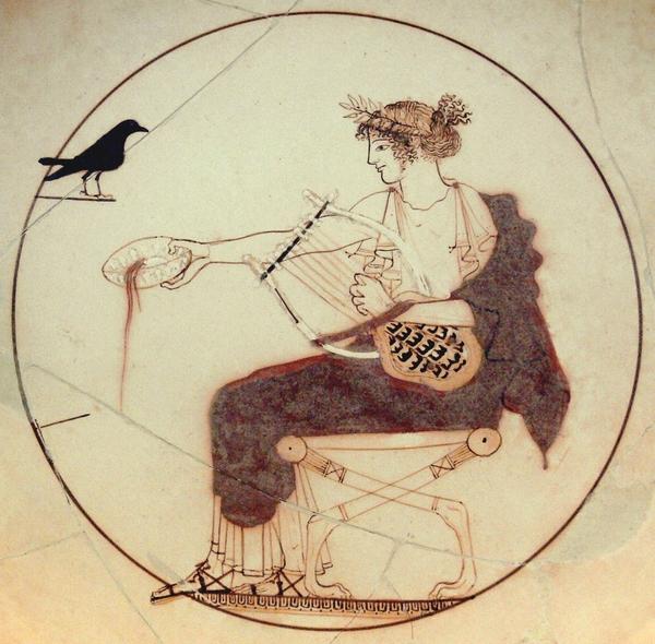 apollo_black_bird_am_delphi_8140.jpg