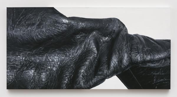2019.01 Tamara Santibañez, Landscape III (Isthmus), 2016