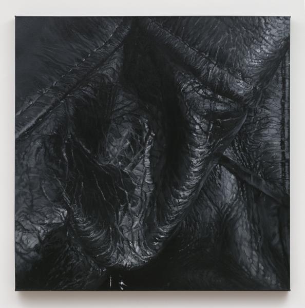 2019.01 Tamara Santibañez, Landscape V (Crevasse), 2016