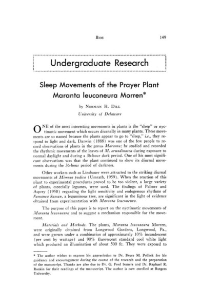 sleep-movements-of-the-prayer-plant-maranta-leuconeura-morren.pdf
