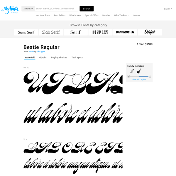 Beatle font by Lián Types, from $37.00