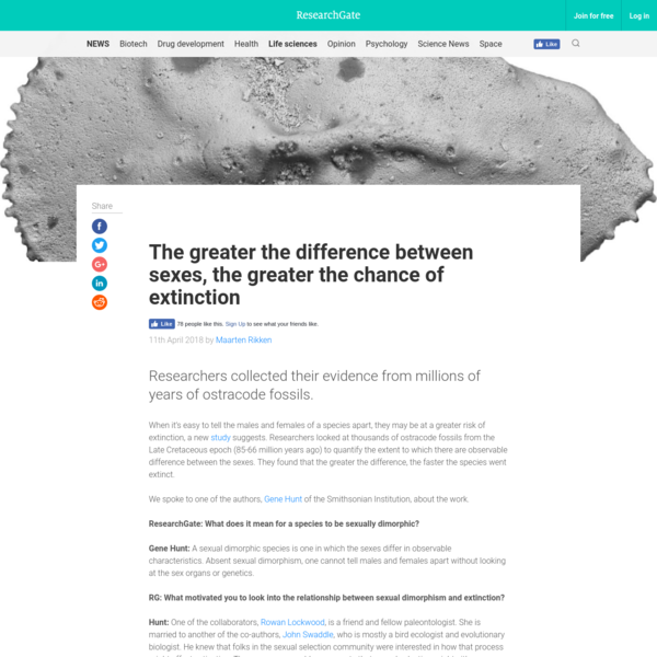 The greater the difference between sexes, the greater the chance of extinction