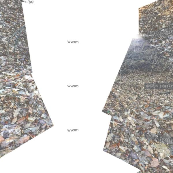 three.js webgl - equirectangular panorama