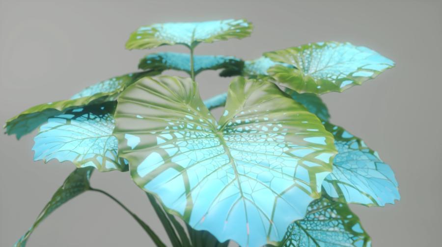 prototype-plant.png