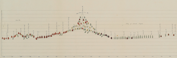 Botanical profile representing the forest trees along the route explored by Lieut. A.W. Whipple, Corps of Topl. Engrs. near the parallel of 35° north latitude, 1853-1854 : from Fort Smith to San Pedro