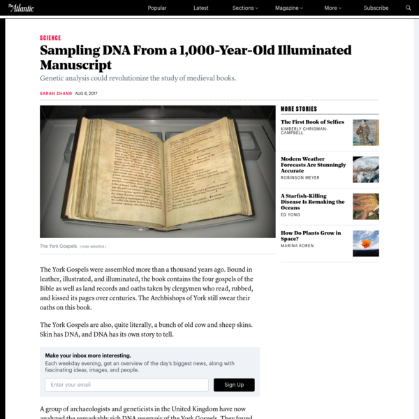 Sampling DNA From a 1,000-Year-Old Illuminated Manuscript - The Atlantic