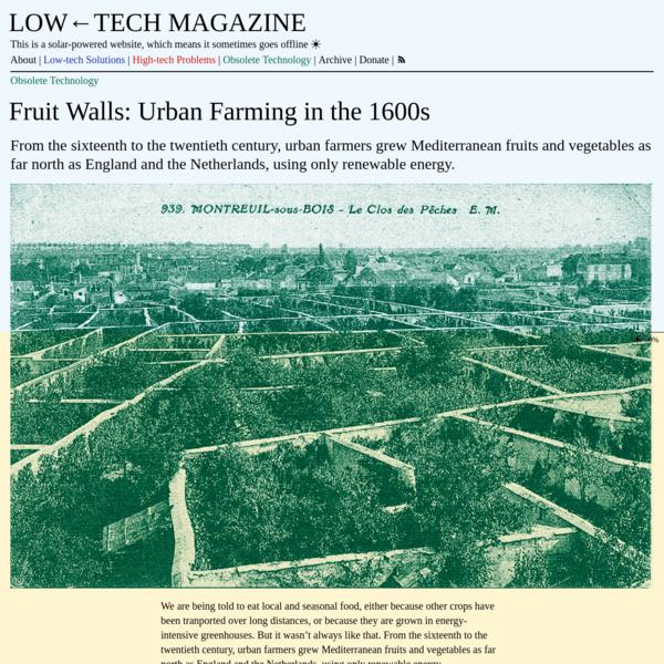 Fruit Walls: Urban Farming in the 1600s