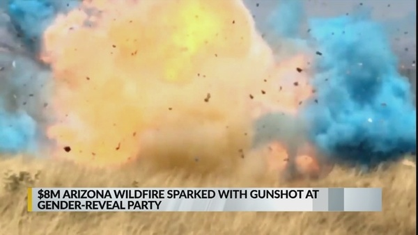 video-shows-arizona-fire-started-with-gender-reveal-party_1543382607945.jpg_63412168_ver1.0_640_360.jpg