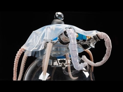 Octopus-Inspired Robots Can Grasp, Crawl, and Swim