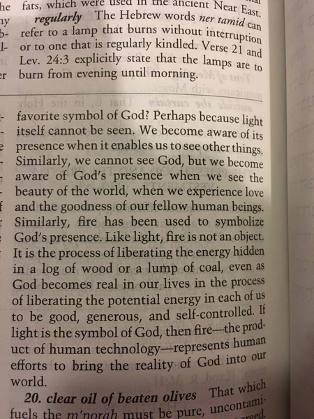 Why light is the favorite symbol of God