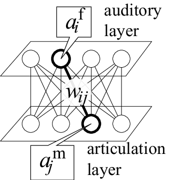 connections-between-the-auditory-layer-and-the-articulation-one.png