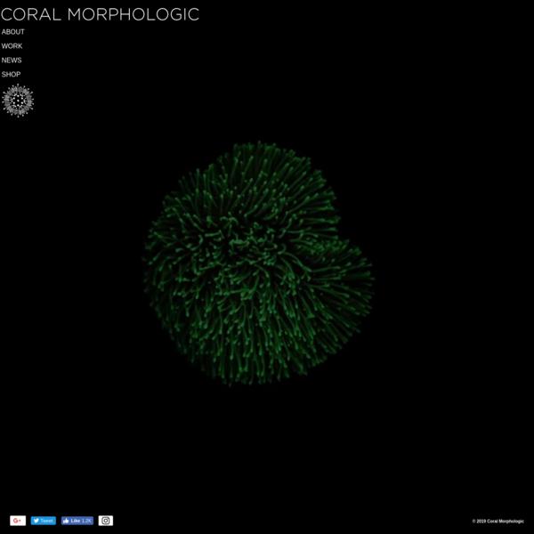 Coral Morphologic