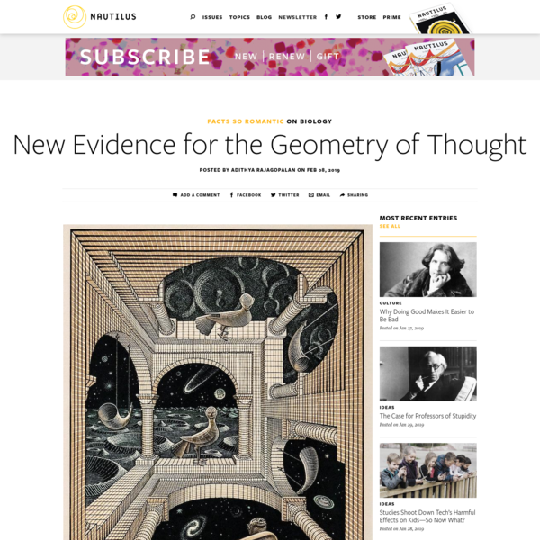 New Evidence for the Strange Geometry of Thought - Facts So Romantic - Nautilus
