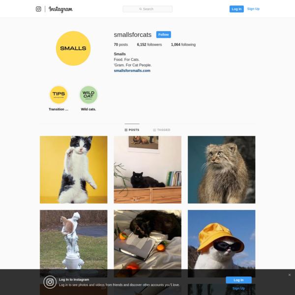 Smalls (@smallsforcats) * Instagram photos and videos