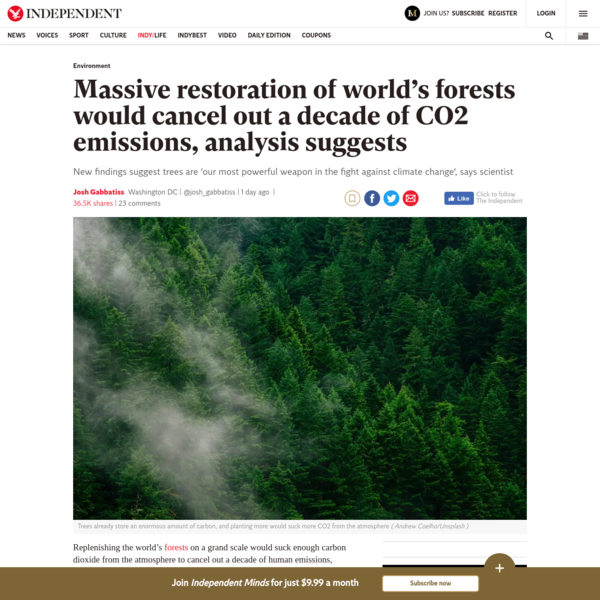 Massive restoration of world's forests would cancel out a decade of CO2 emissions, analysis suggests