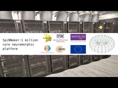 SpiNNaker: 1 million core neuromorphic platform