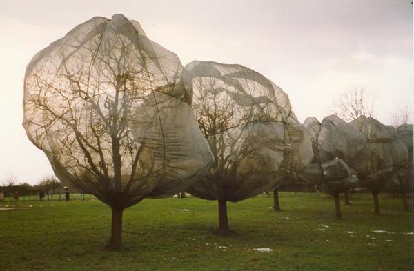 christo-wrapped-trees.jpg