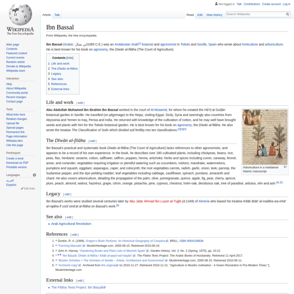 Ibn Bassal - Wikipedia