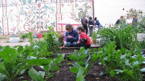 Preserve Green Space & Save the Sloan Street Community Garden