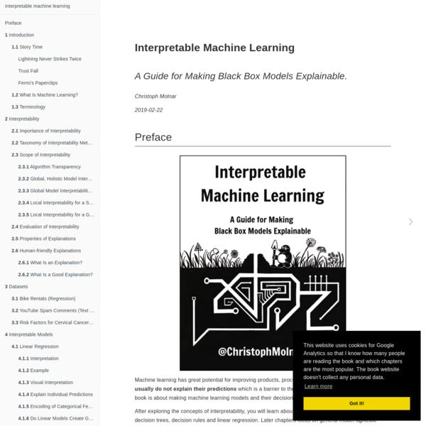 Interpretable Machine Learning