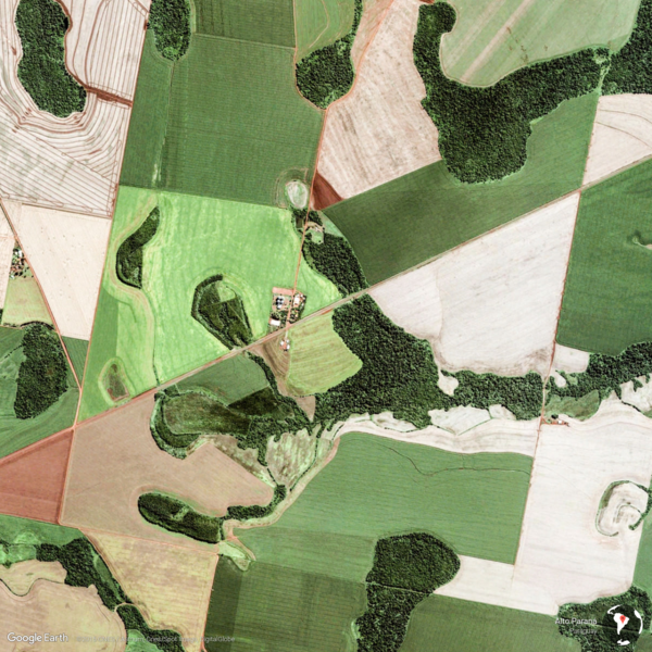 Alto Paraná, Paraguay - Earth View from Google
