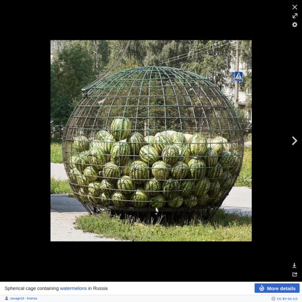 Cage - Wikipedia