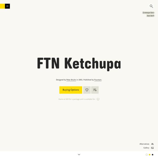FTN Ketchupa
