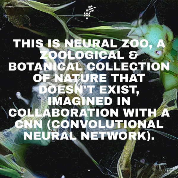 Welcome to Neural Zoo