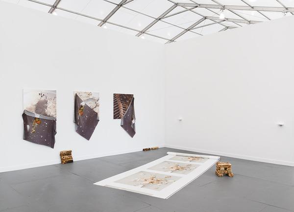 Anna-Sophie Berger, Frieze Frame, 2015