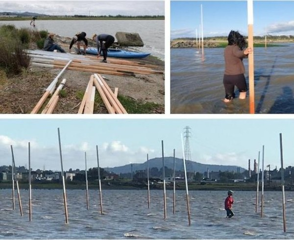 Toolkit Feature: Sea Leveling Rods (Home Team) @mithun_hometeam_rbd created these sea levelling rods as an art project and c...