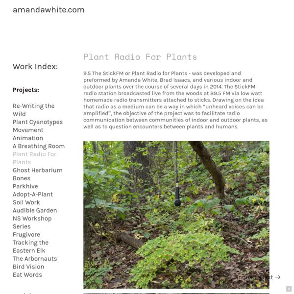Plant Radio For Plants - Amanda white