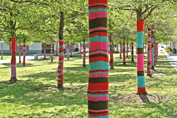 yarn-bomb-_5-knitting-trees-handmade-greeting-card-ann-woodall-studios-photo-art-shop.jpg