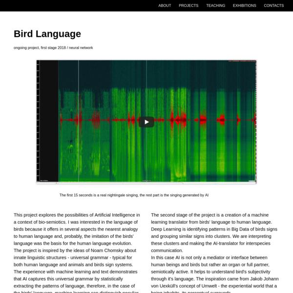 Birds Language