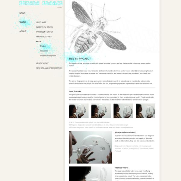 Susana Soares: Bee´s / Project