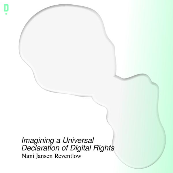 Imagining a Universal Declaration of Digital Rights - Ding Magazine
