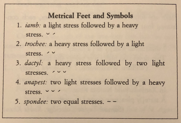 metrical feet and symbols