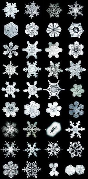 eb805baf8da81780d169ef996341ae74-snow-flake-tattoo-snow-tattoo.jpg
