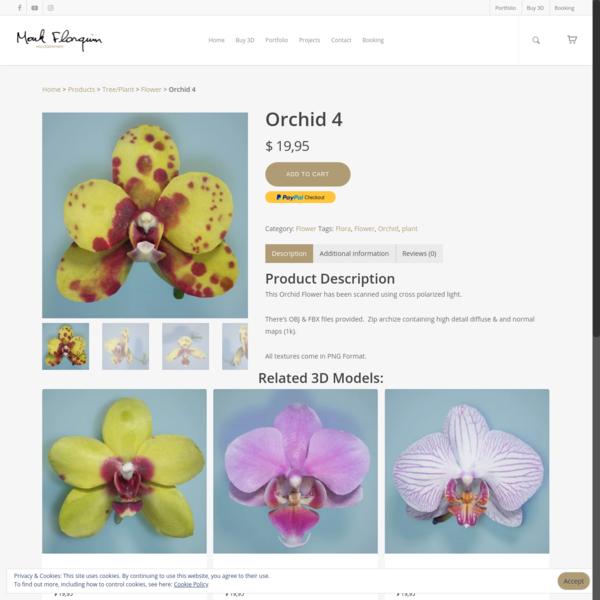 Orchid 4 - Mark Florquin