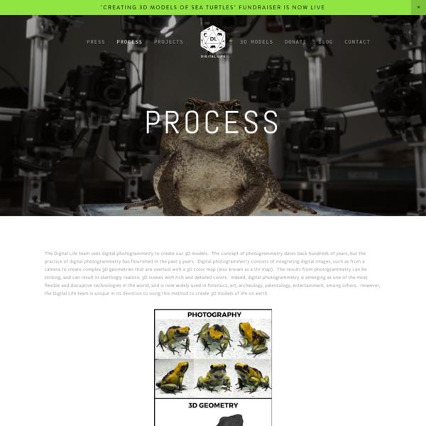 Process - Digital Life