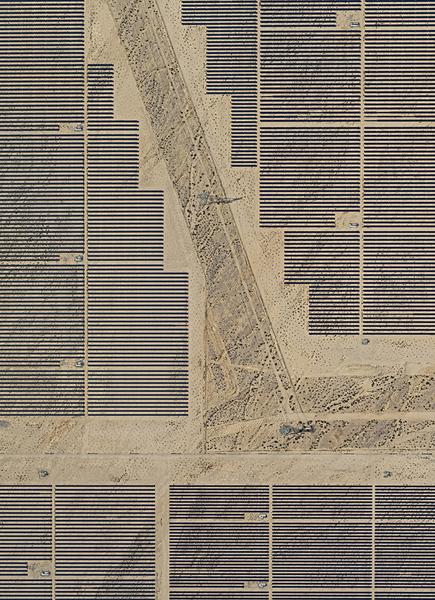 bernhardlang-solarplants-photography-itsnicethat-01.jpg