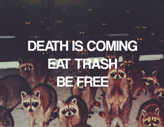 Death is coming, eat trash, be free