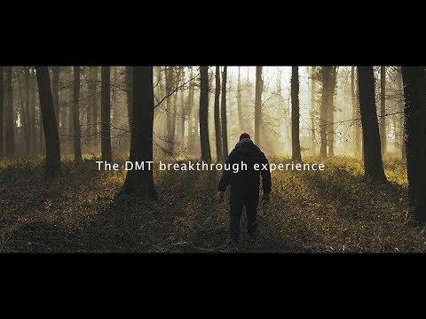 DMT breakthrough experience explained (dmt trip)