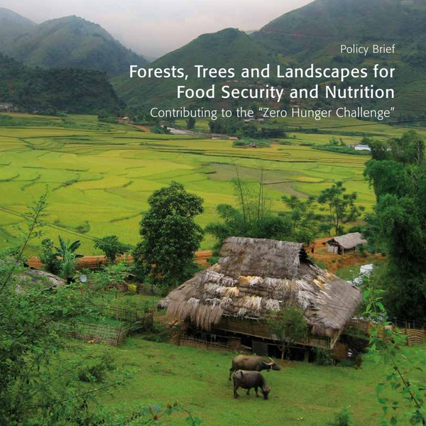gfep-forests-and-food-security-policy-brief.pdf