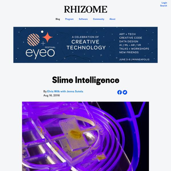 Slime Intelligence