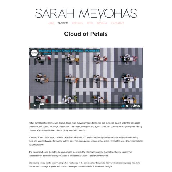 CLOUD OF PETALS - SARAH MEYOHAS