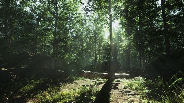 Unreal 4 Lighting Study: Forest Day