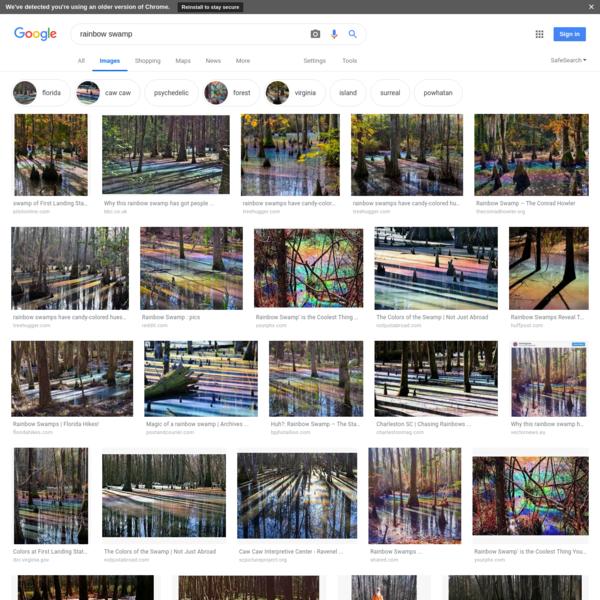 rainbow swamp - Google Search