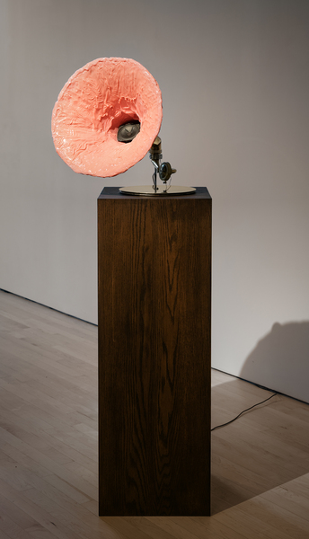 Doreen Garner, Heard From Her Larynx: Sandra, 2019