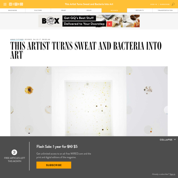 This Artist Turns Sweat and Bacteria Into Art