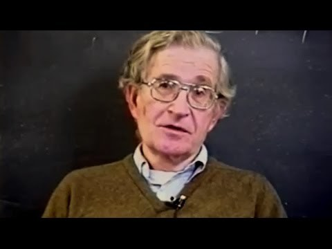 Noam Chomsky - A System Without Money
